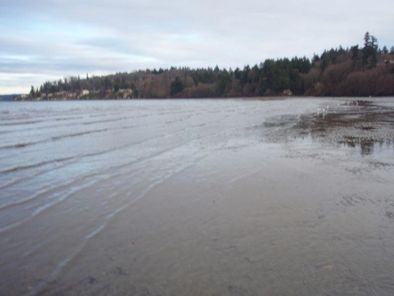 Dumas Bay Shore