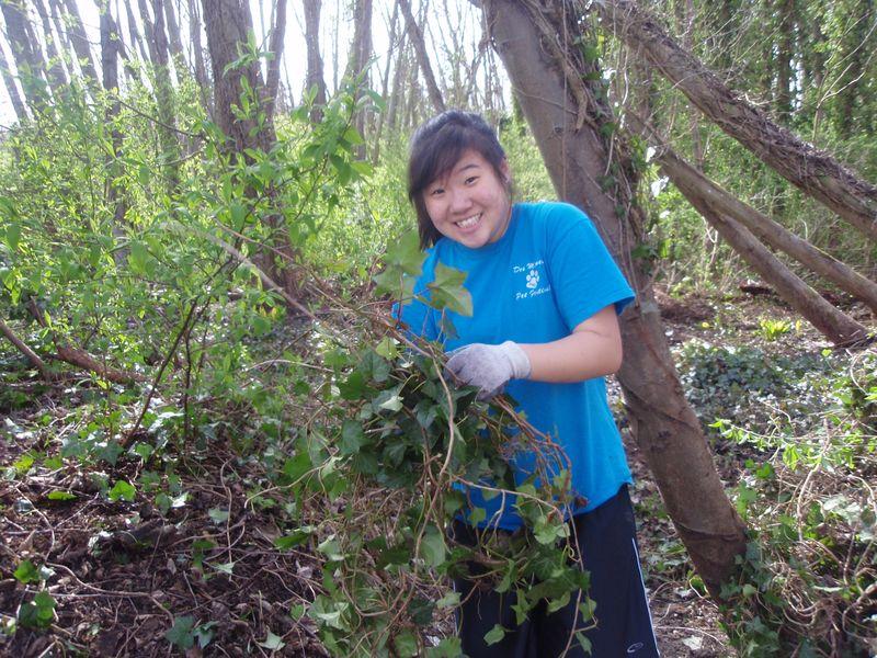 Sarah Yu makes bundles