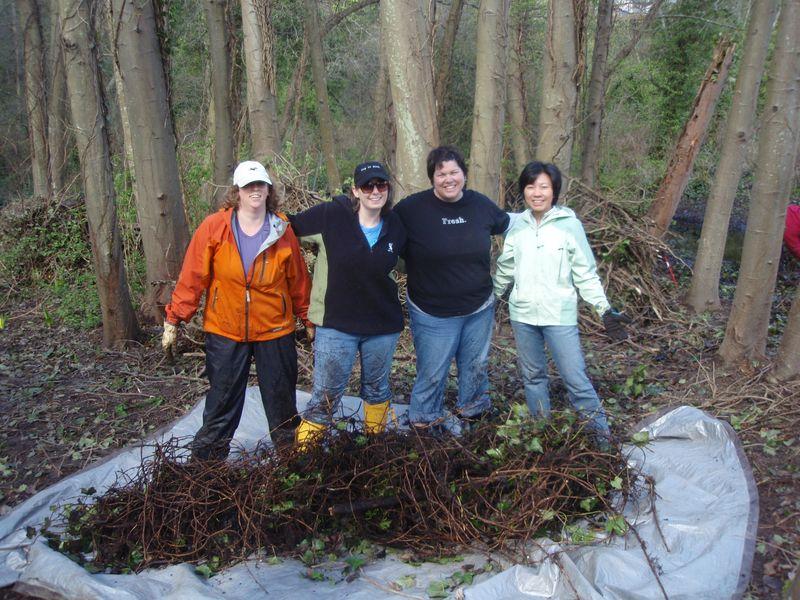 Ladies & the muddy ivy