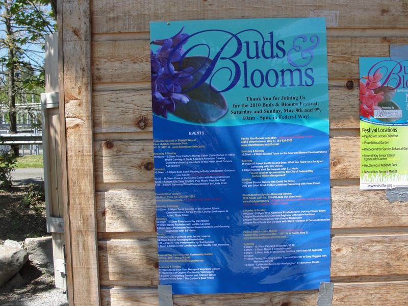 Buds & Bloom sign